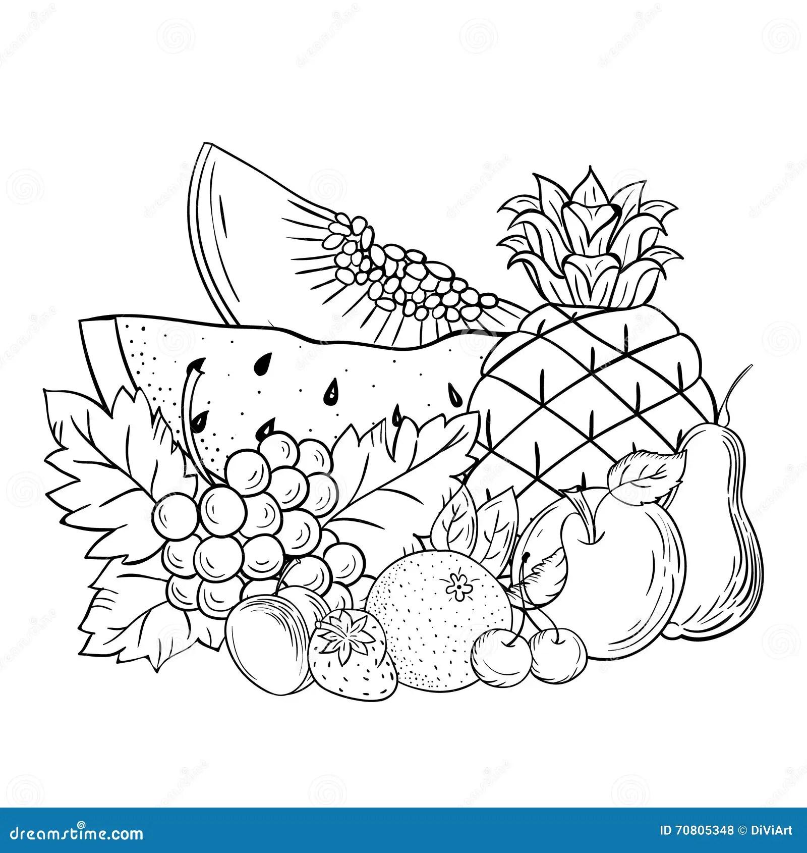 Frutta Di Natura Morta Di Schizzo Di Vettore Illustrazione