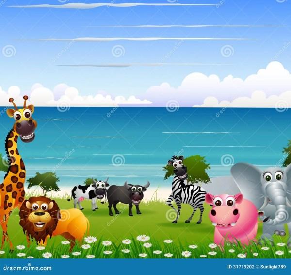 Funny Animal Cartoon Beach