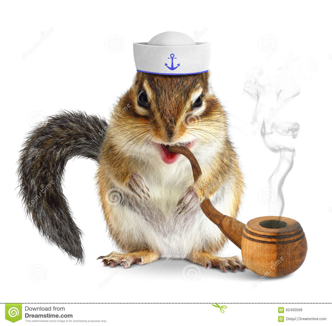 Funny Animal Sailor Squirrel With Tobacco Pipe And