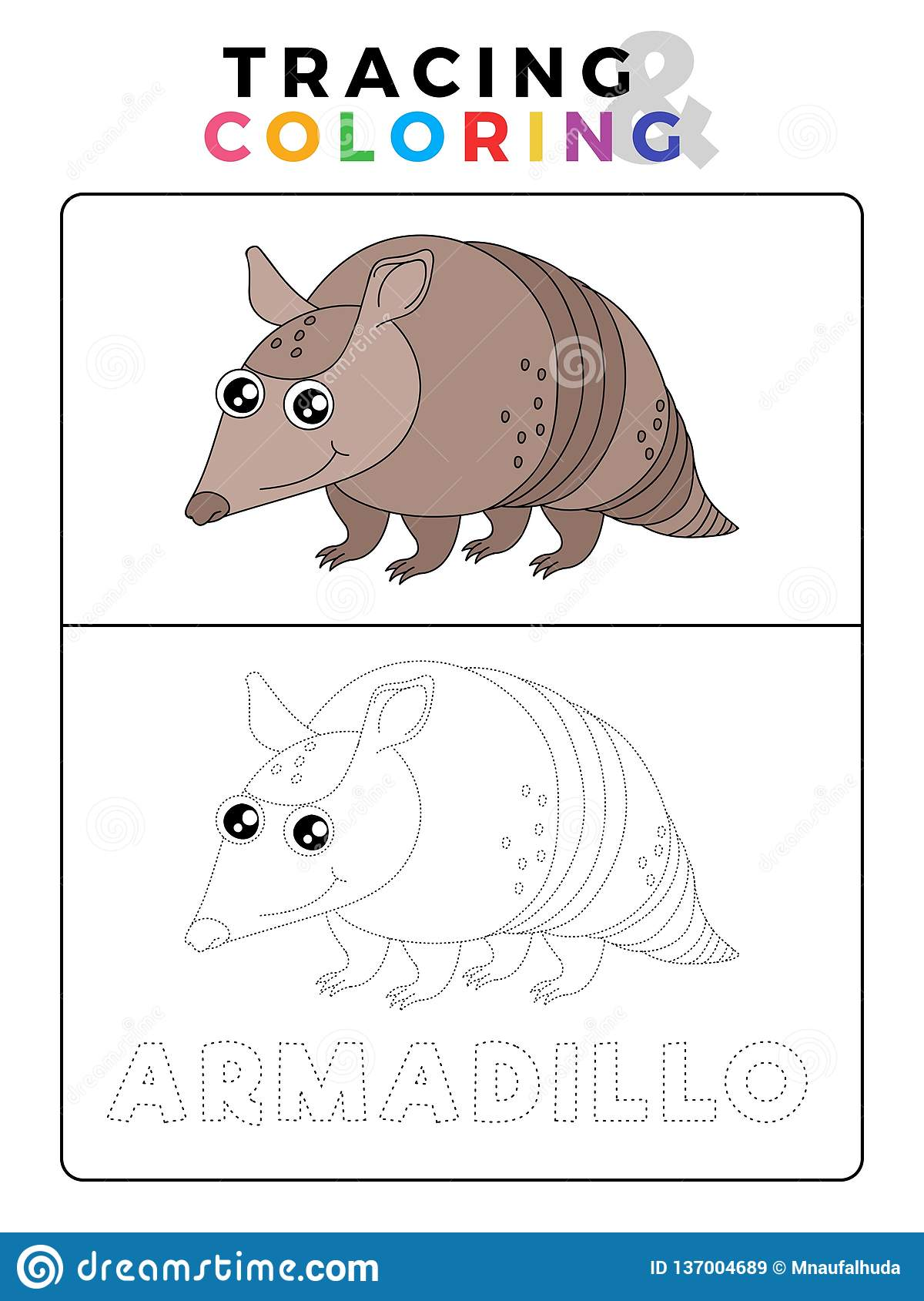 Funny Anteater Funny Armadillo Animal Tracing And Coloring