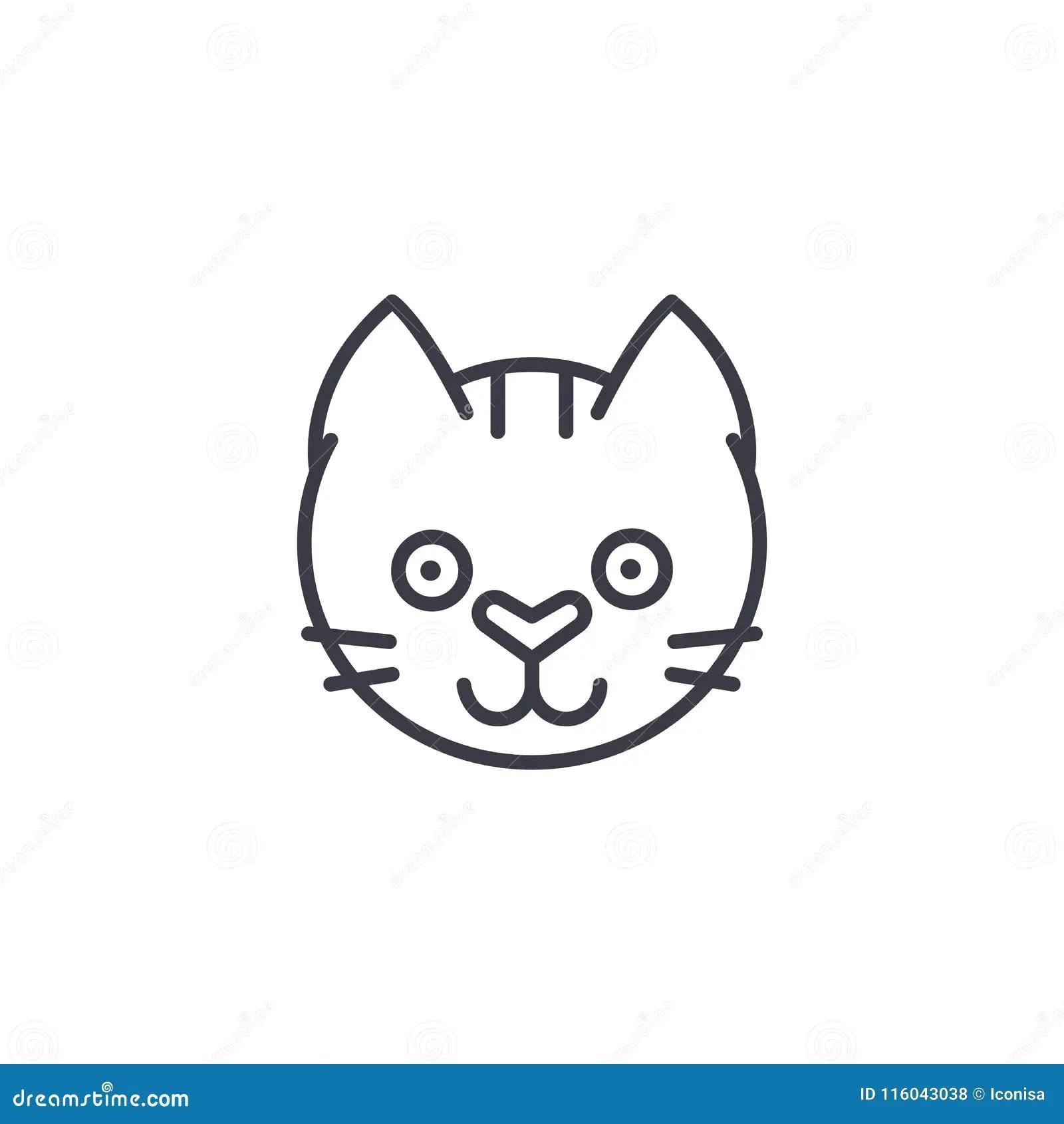 Vector Sketch Beautiful Cat Muzzle Cartoon Vector