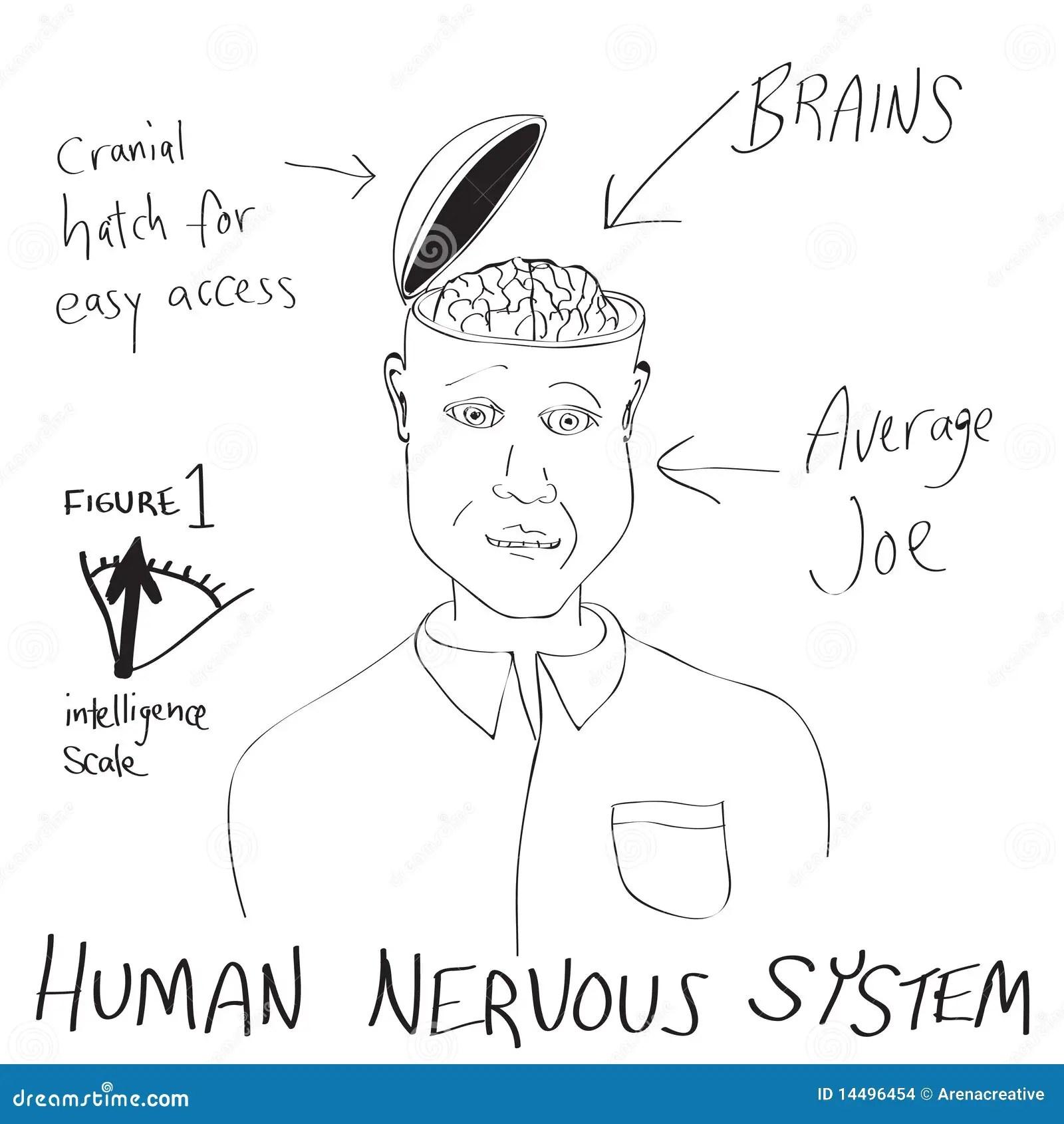 hight resolution of cartoon face diagram wiring diagram info cartoon face diagram