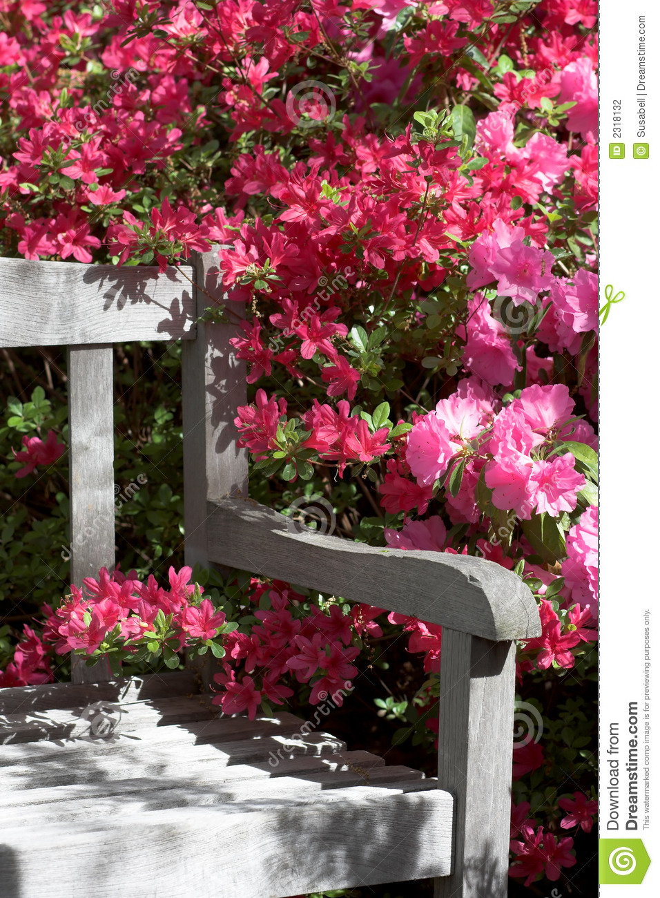 Garden Bench And Flowers Stock Photography Image 2318132