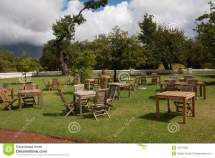 Garden Furniture Stock Of Trees Table