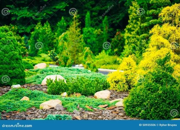garden landscaping design. flower