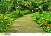 Garden Path, Singapore Botanic Gardens Stock Photo - Image ...