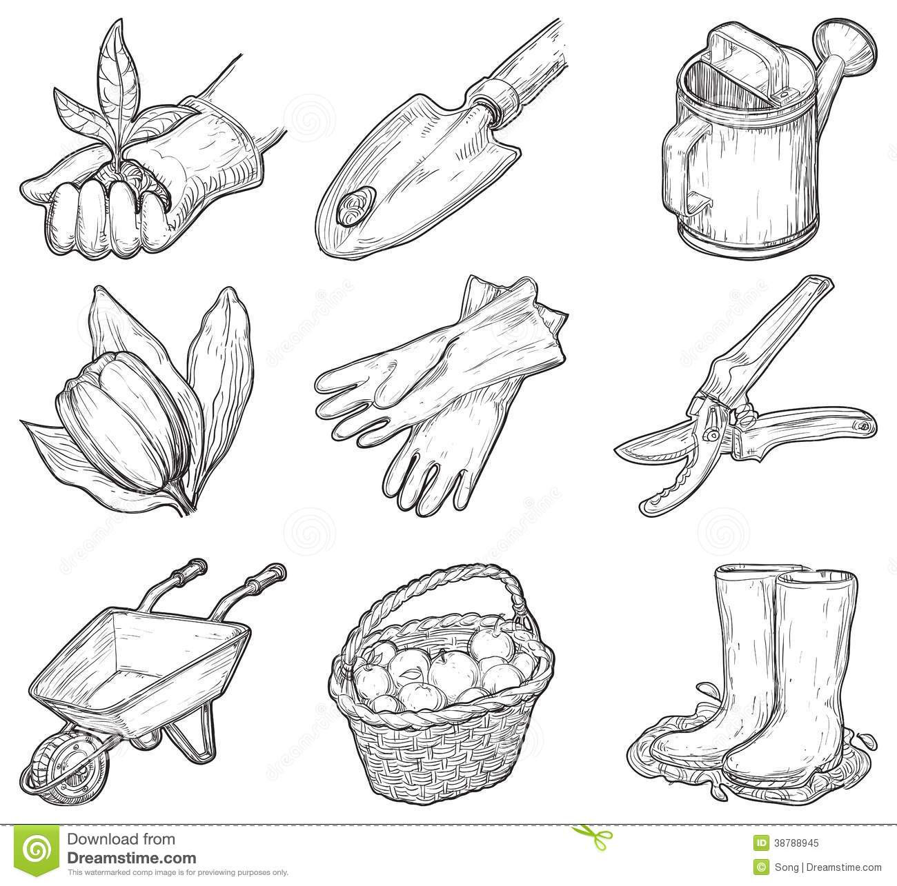 Garden Tools And Things Stock Vector Image Of Puddle