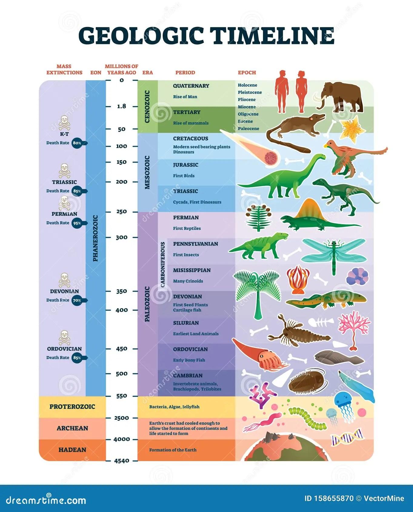 Geologic Timeline Scale Vector Illustration Labeled Earth