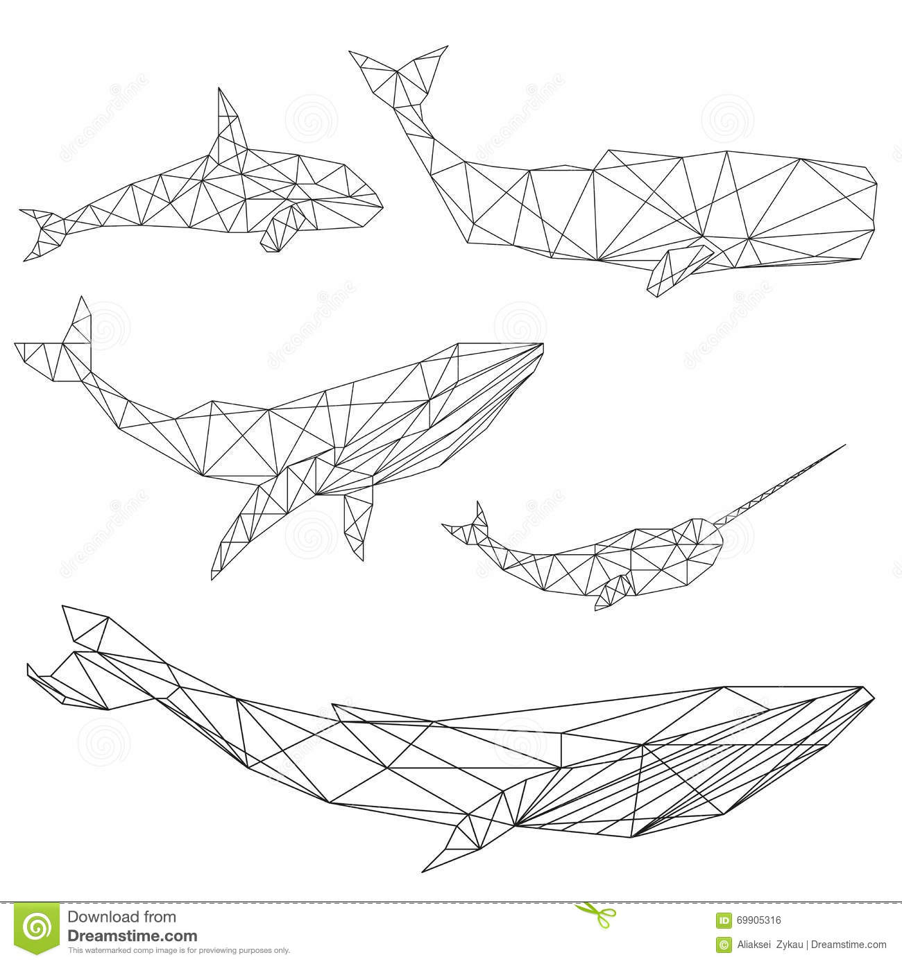 Geometric Whale Set Stock Vector Image Of Cachalot