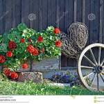 Geranium Willow Heart Front Porch Decoration Stock Image Image Of Blooming Willow 103257741