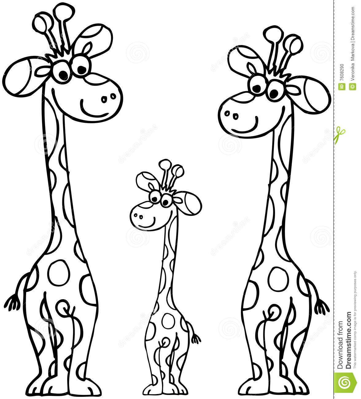 Giraffes Family Stock Vector Image Of Mammals Wild