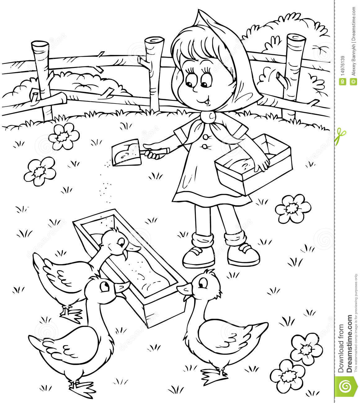 Girl Feeds Ducks Stock Illustration Illustration Of Rural