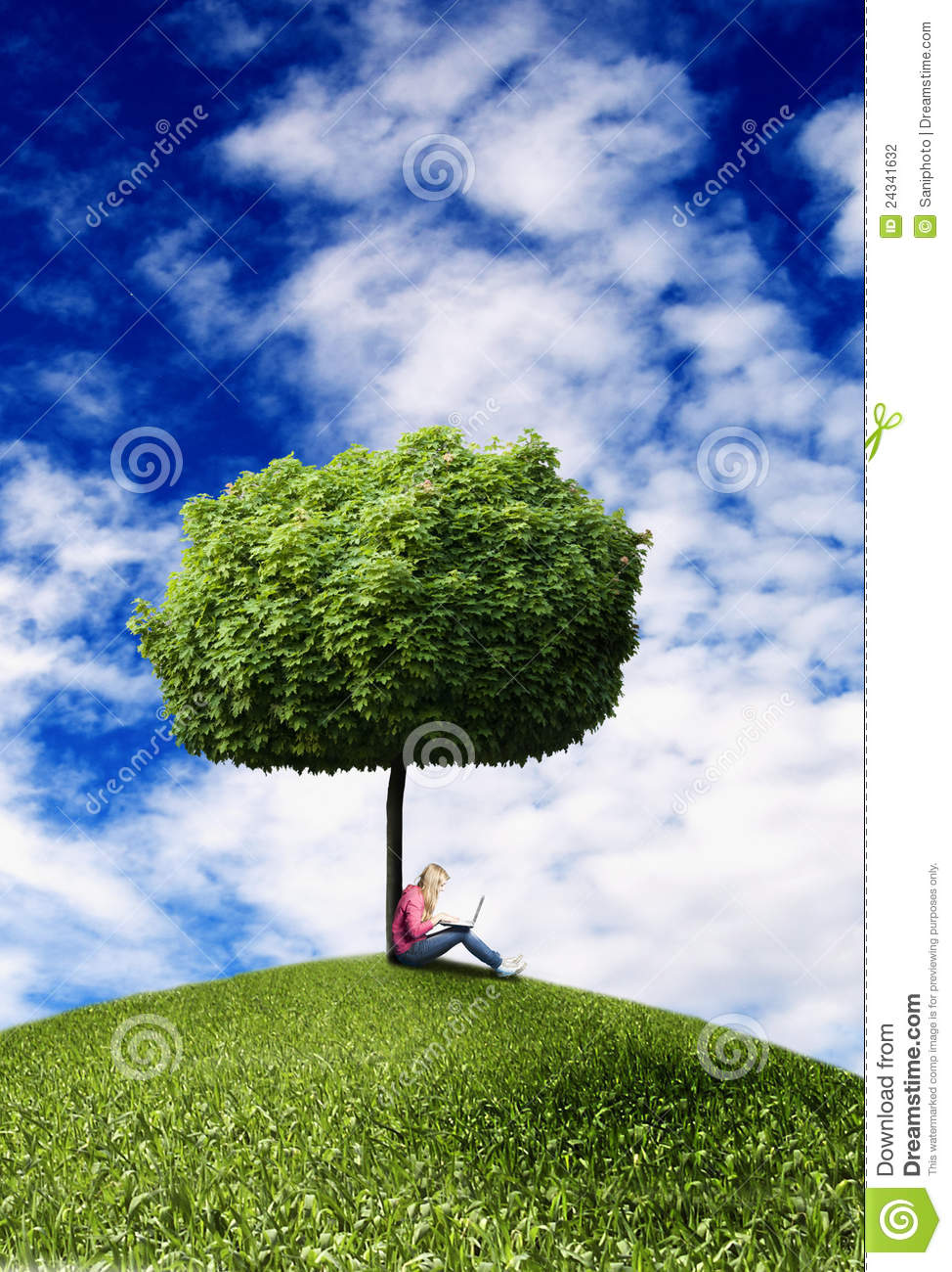 Girl Under Tree With Laptop Stock Photo  Image of under