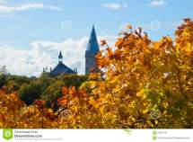Golden Maple Leaves Background Tower Of