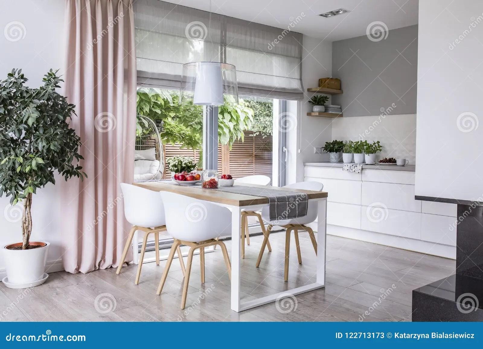 Graa Roman Skuggor Och En Rosa Gardin Pa Stora Glass Fonster I A Fotografering For Bildbyraer Bild Av Bifokal 122713173