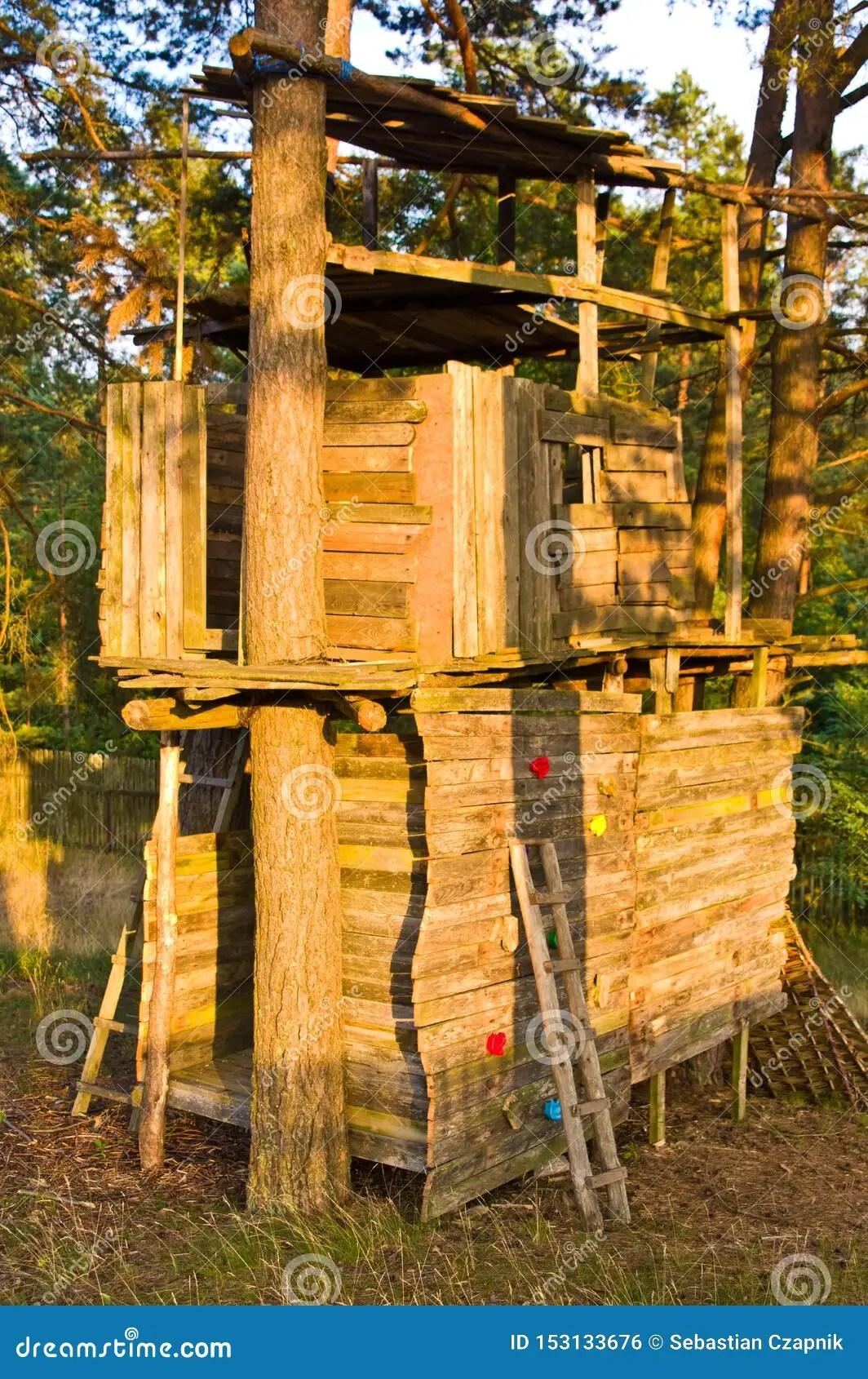 grande cabane dans un arbre en bois