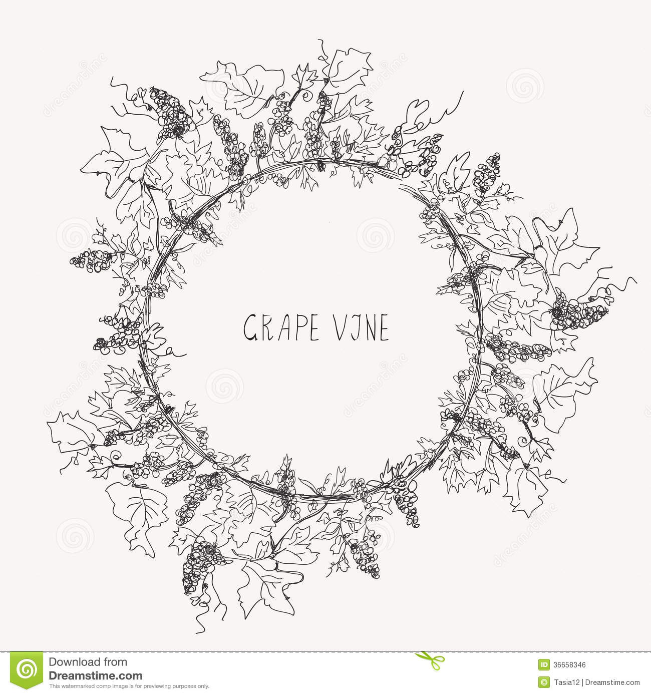 Grape Vine Sketch Frame Round Royalty Free Stock Image