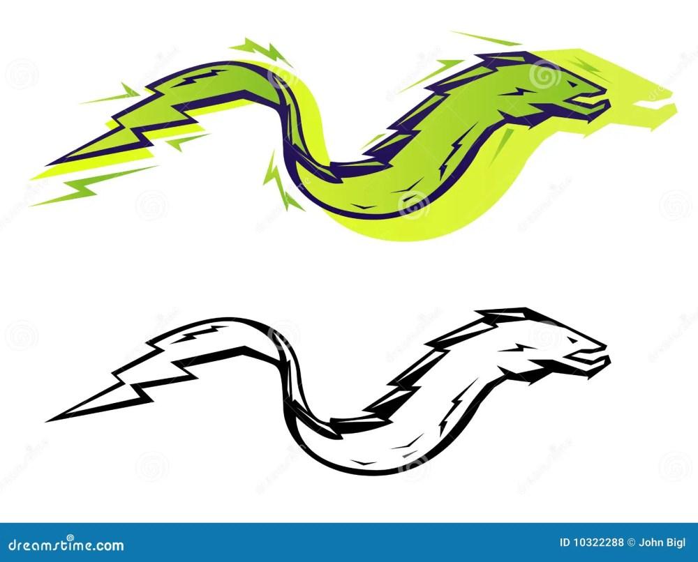 medium resolution of graphic eel