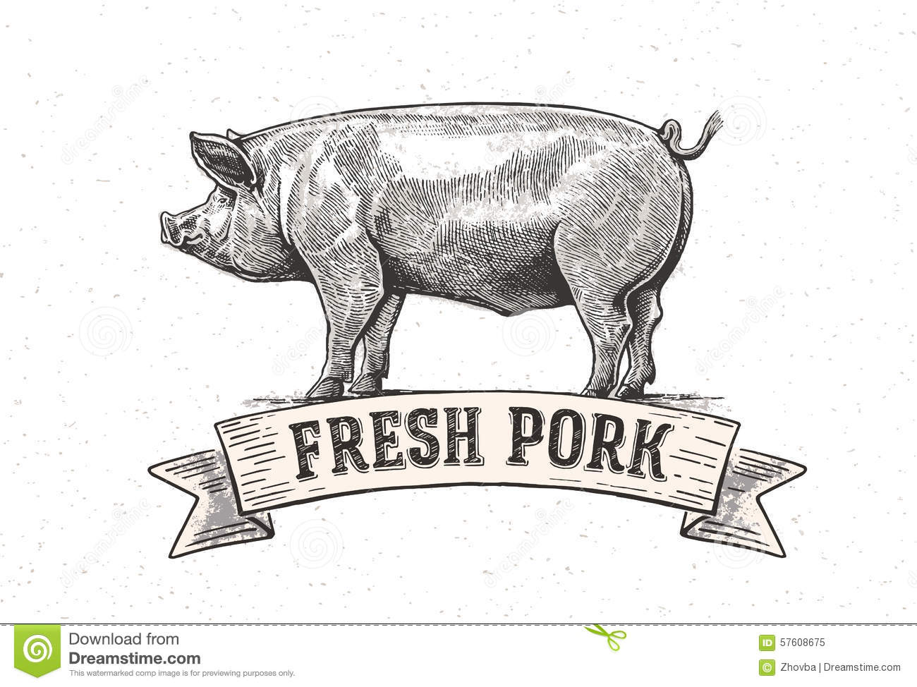 Graphic Pig Stock Vector