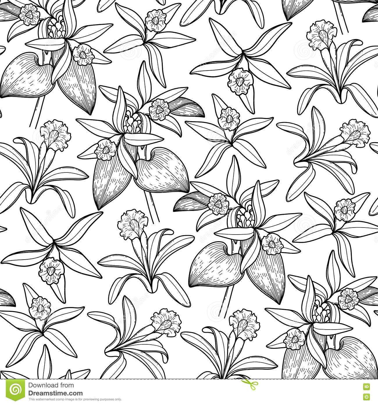 Graphic vanilla pattern stock vector. Image of floral