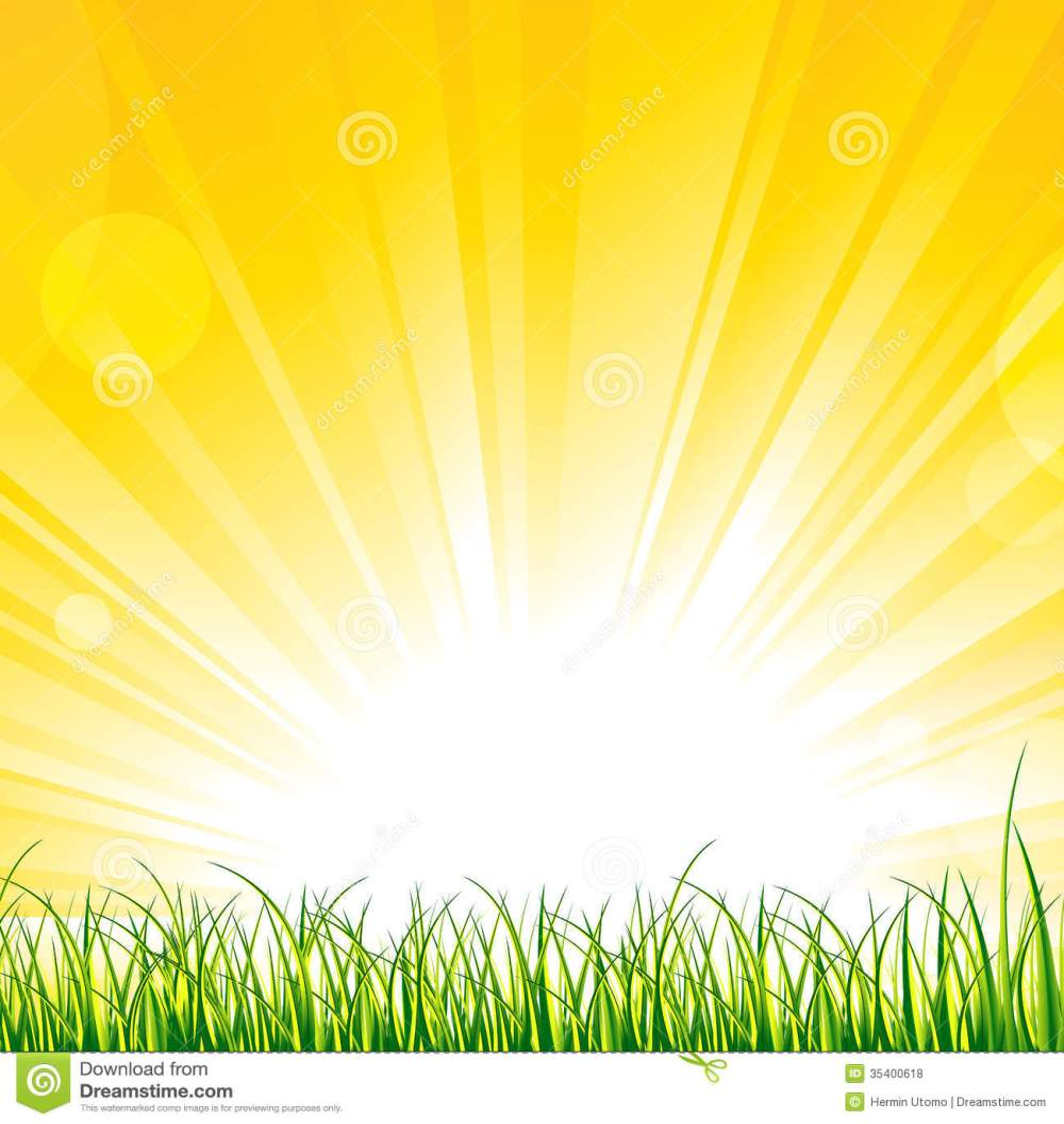 medium resolution of grass on the sunshine rays
