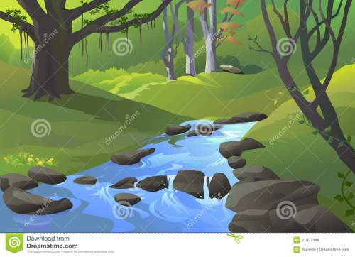 small resolution of green amazon forest with a stream