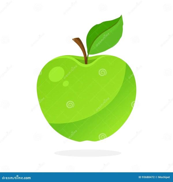 Apple Stem and Leaf Vector