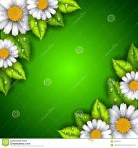 Green Background With Flowers And Leaves Stock Vector ...