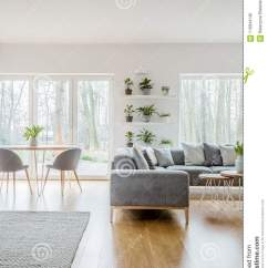 Living Room Pillows Floor Paint Options For Green Fresh Plants In Pots Placed On Shelves White Interior With Grey Corner Couch And Bright Carpet The