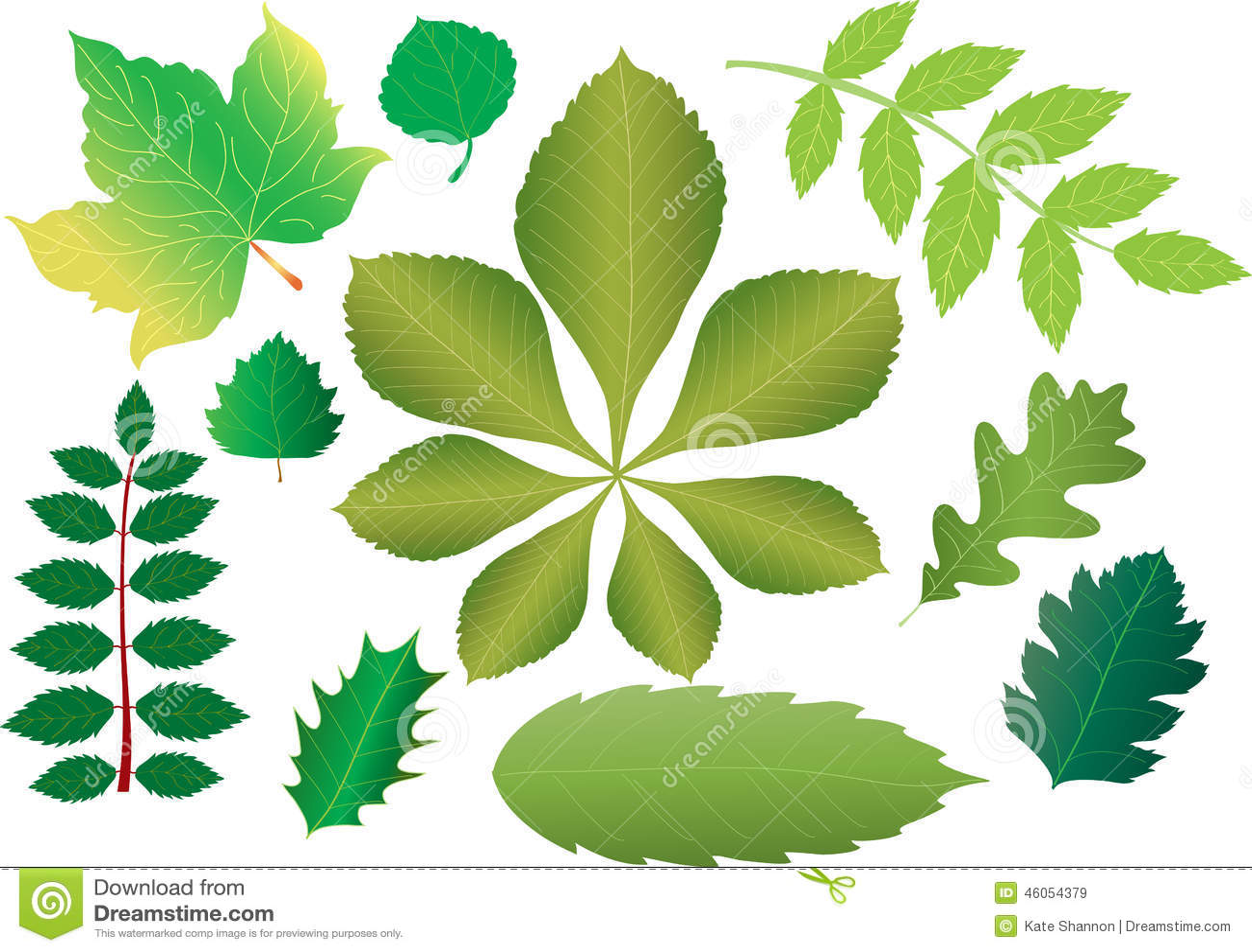 Green Leaves Stock Vector Illustration Of Trees Horse