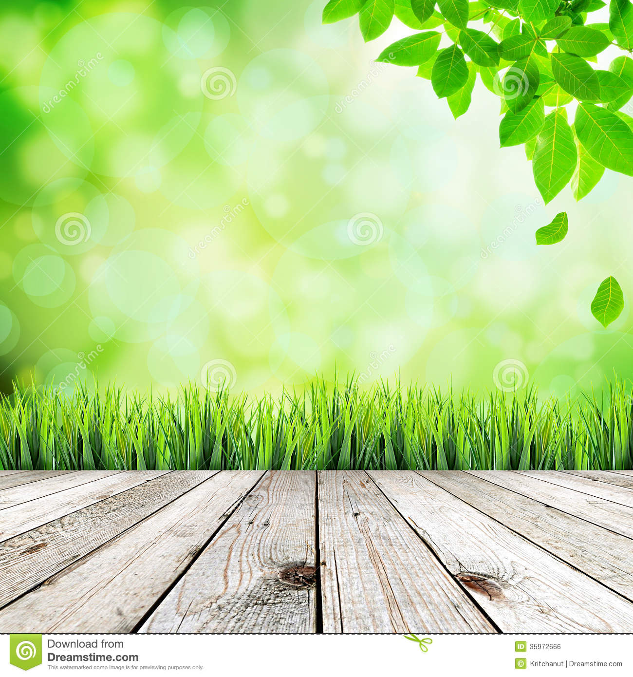 green natural abstract background