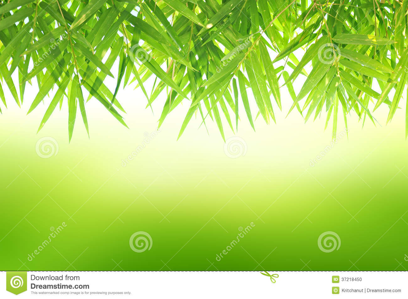 Autumn Falling Leaves Wallpaper Green Natural Background With Bamboo Leaves Stock Photo
