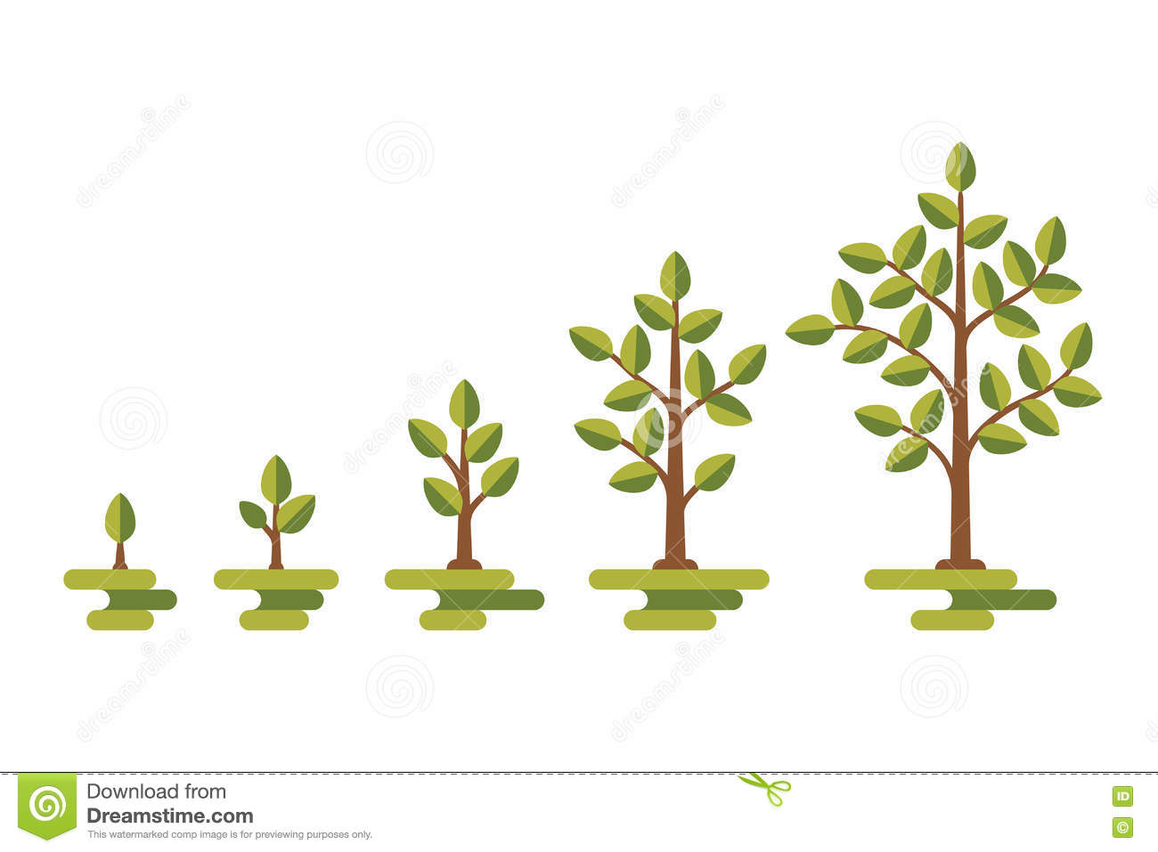 hight resolution of green tree growth vector diagram
