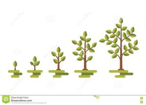 Ecosystem Diagram Vector Illustration | CartoonDealer