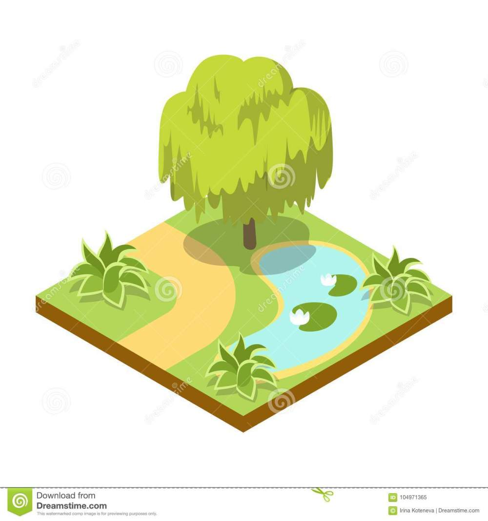 medium resolution of green willow tree near lake isometric 3d icon