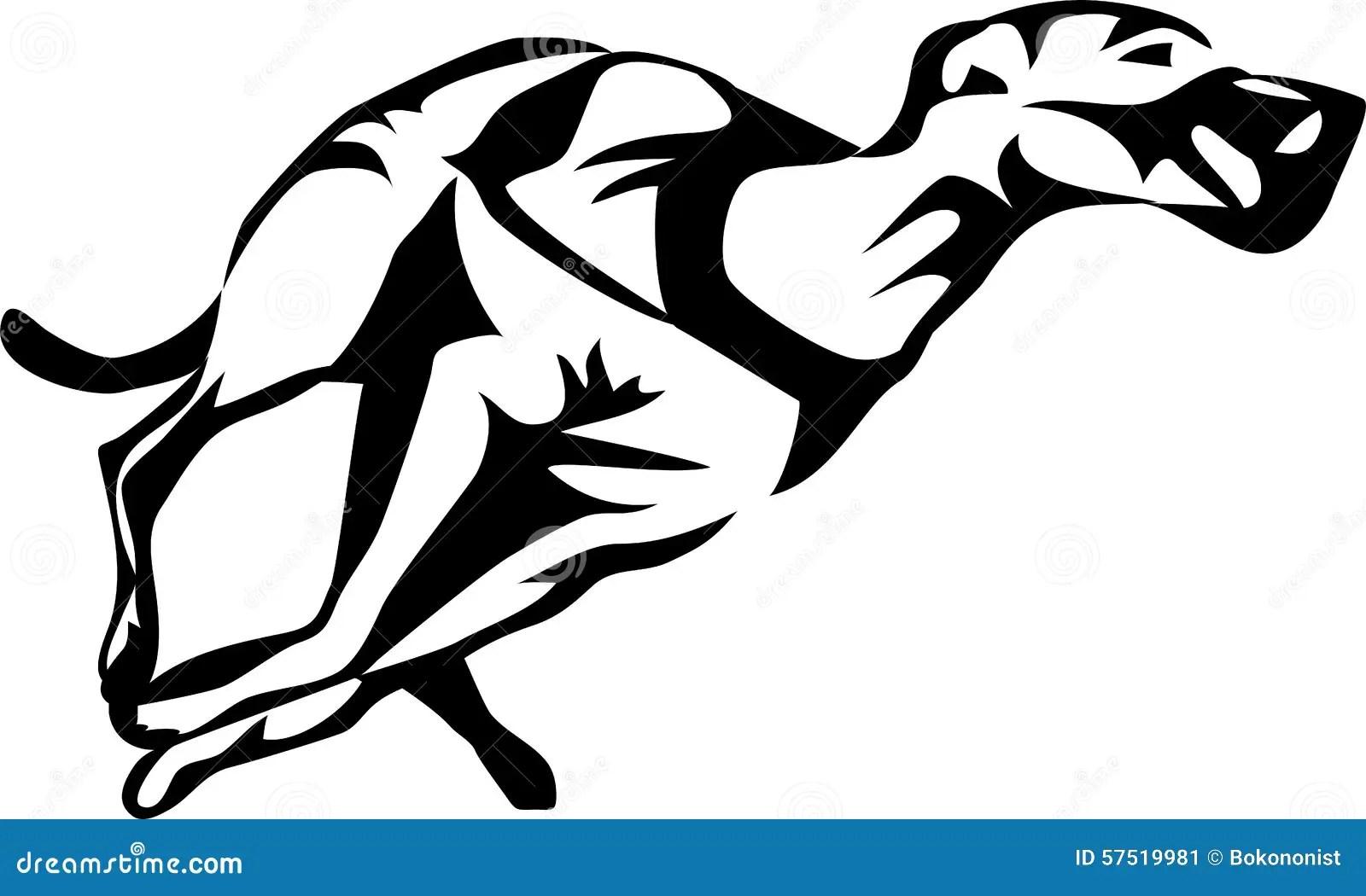 Greyhound Dog Racing Stock Vector Illustration Of