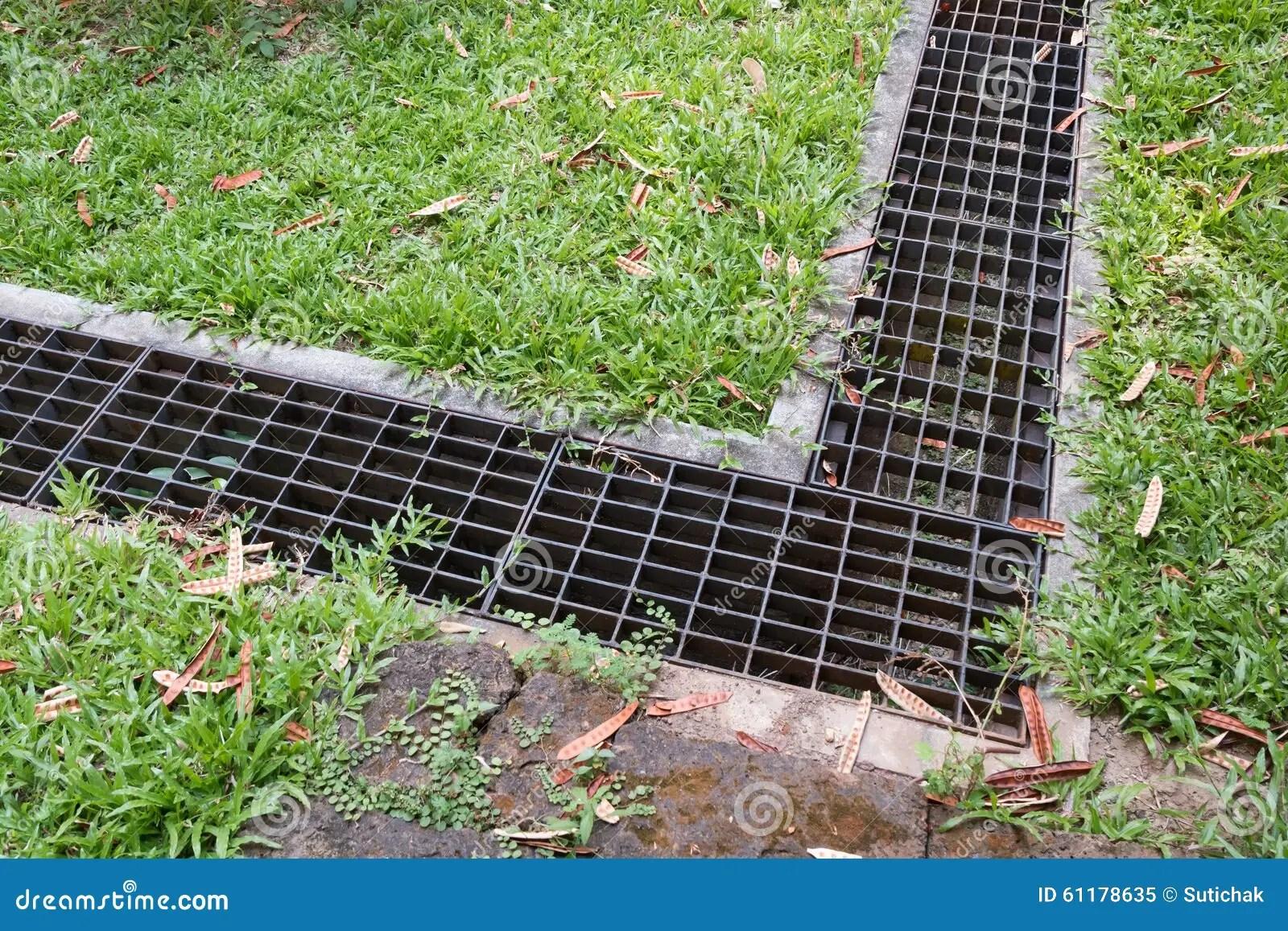 Grille De Fer De Drain De Leau Dans Le Jardin Dherbe Image stock  Image du cache gout 61178635