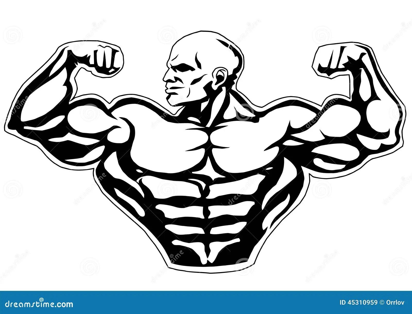 Gro Er Zweikopfiger Muskel Vektor Abbildung Illustration