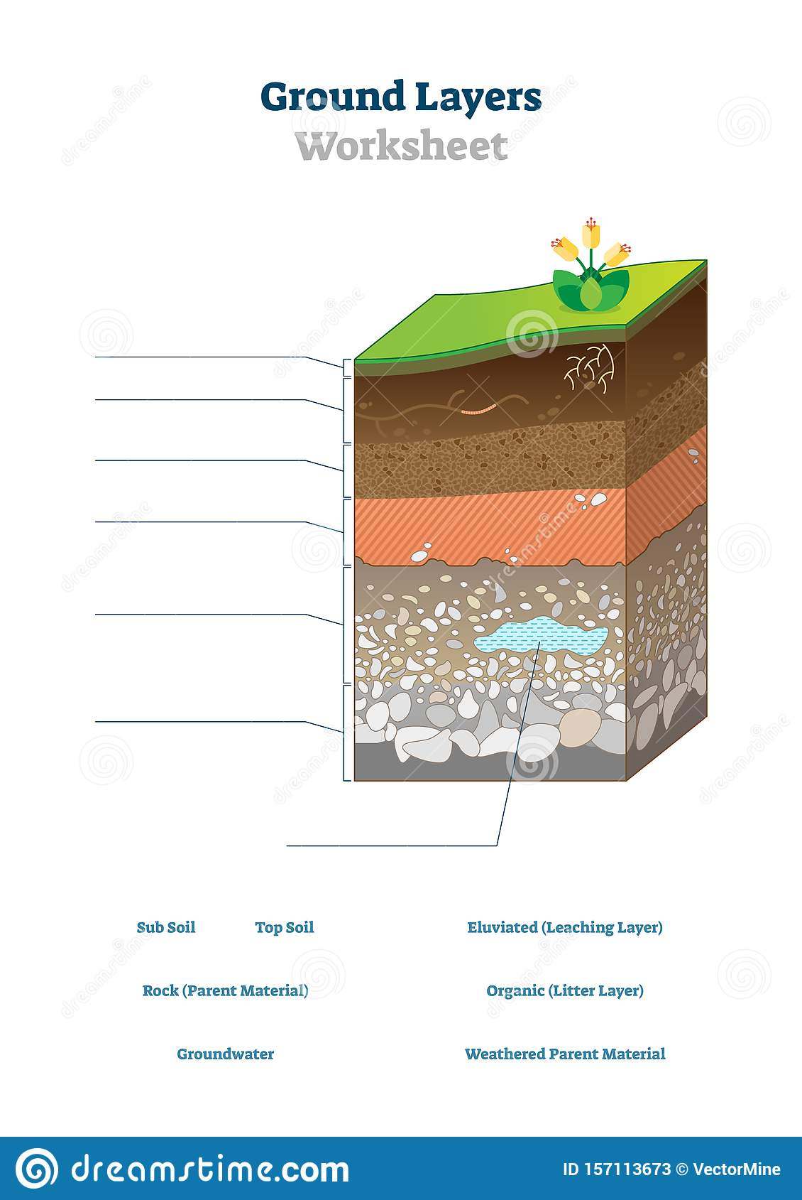 Ground Layers Worksheet Vector Illustration Soil Surface