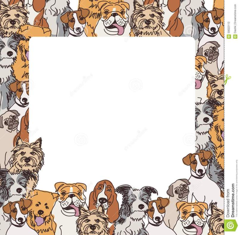 photo frames for dogs   Frameswalls.org