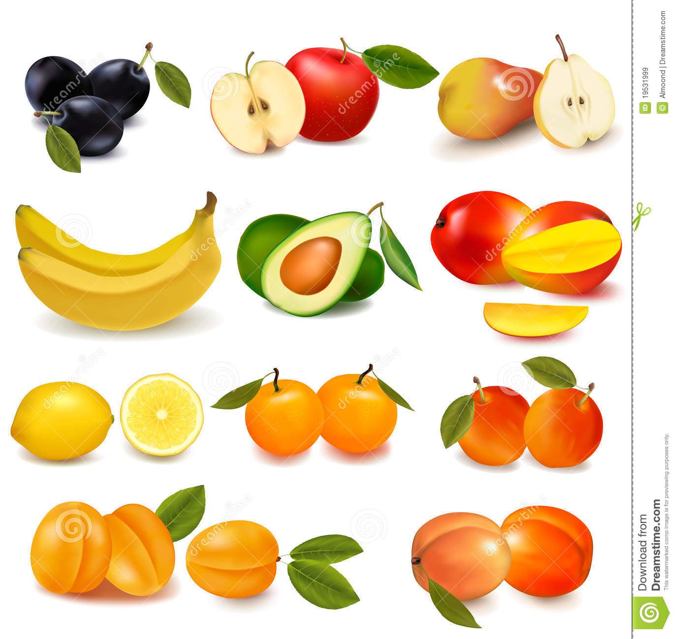 Group With Different Sorts Of Fruit Stock Vector