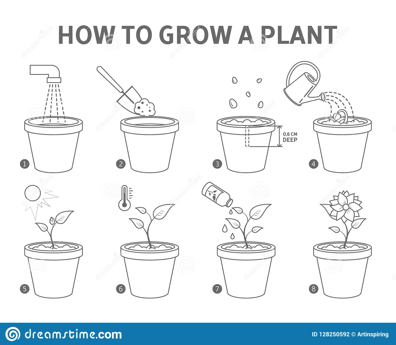 Growing A Plant In The Pot Guide Stock Vector