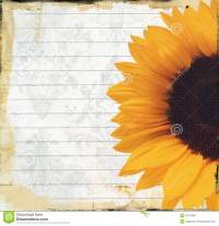 Grungy Note Paper With Sunflower Royalty Free Stock ...