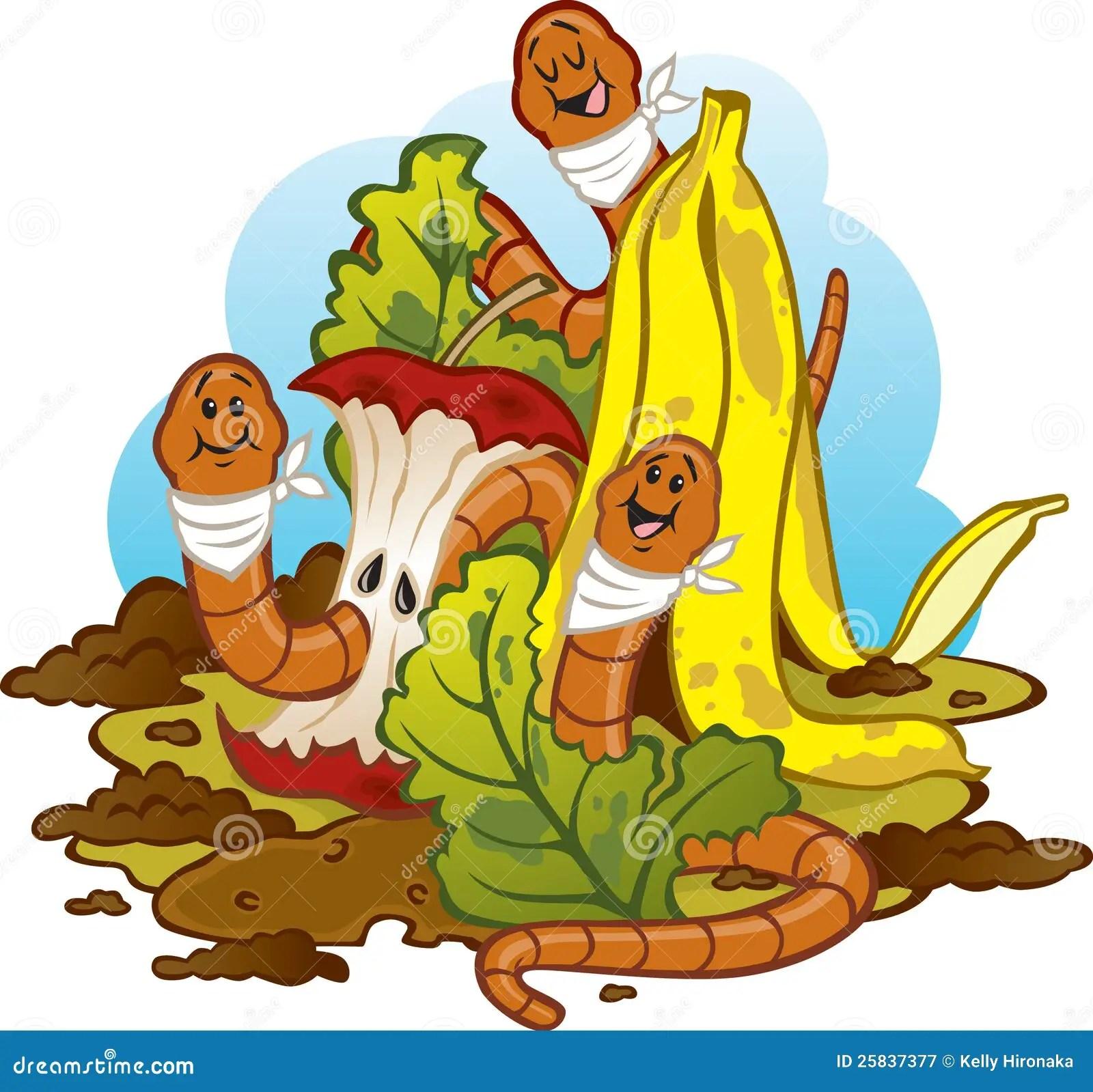 Gusanos Que Comen El Estiercol Vegetal Vermicomposting