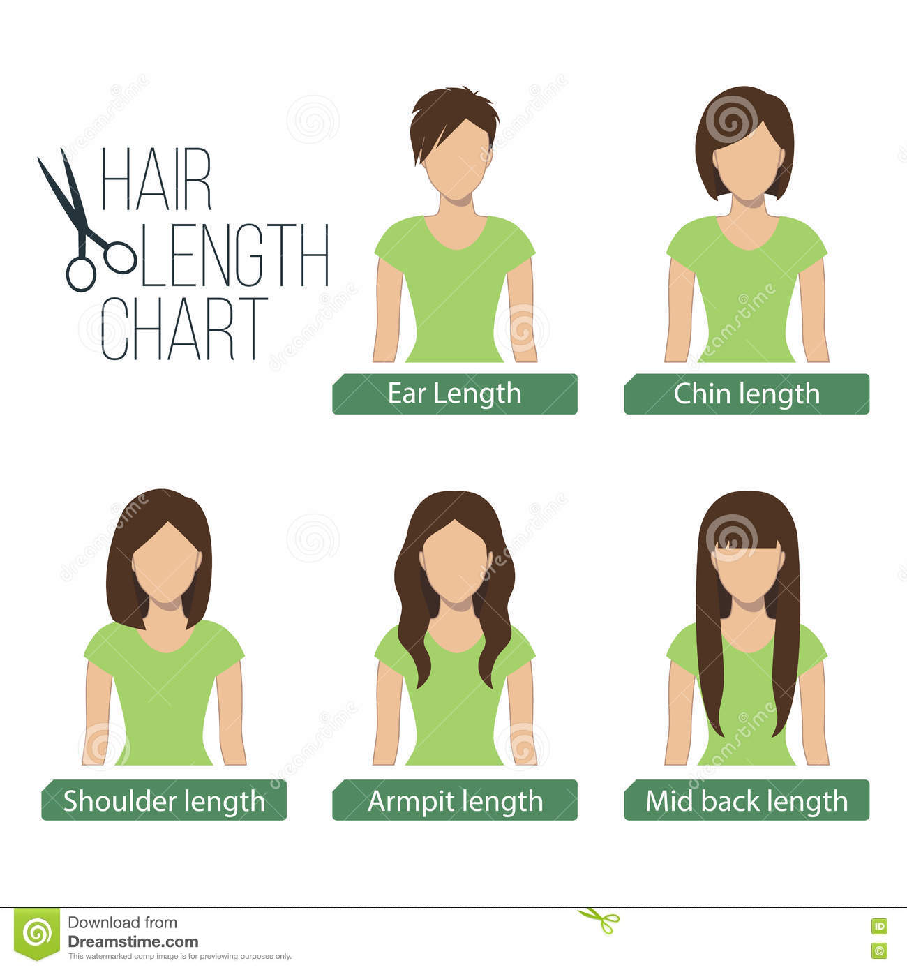 Hair Length Chart Front View Stock Vector Image 74671600