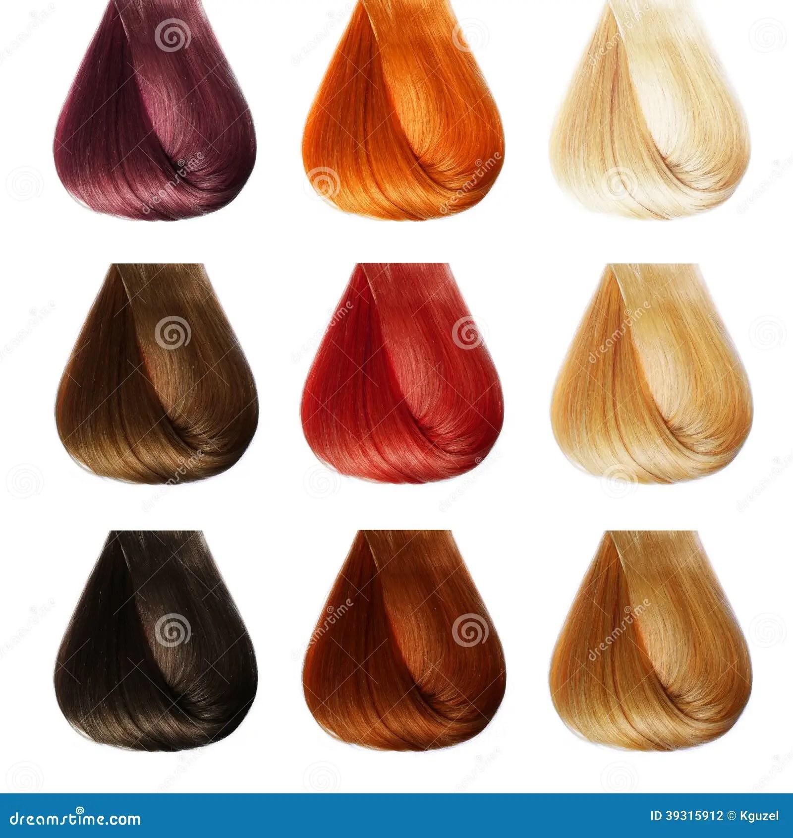 Hair Palette Colors Set Stock Photo Image 39315912