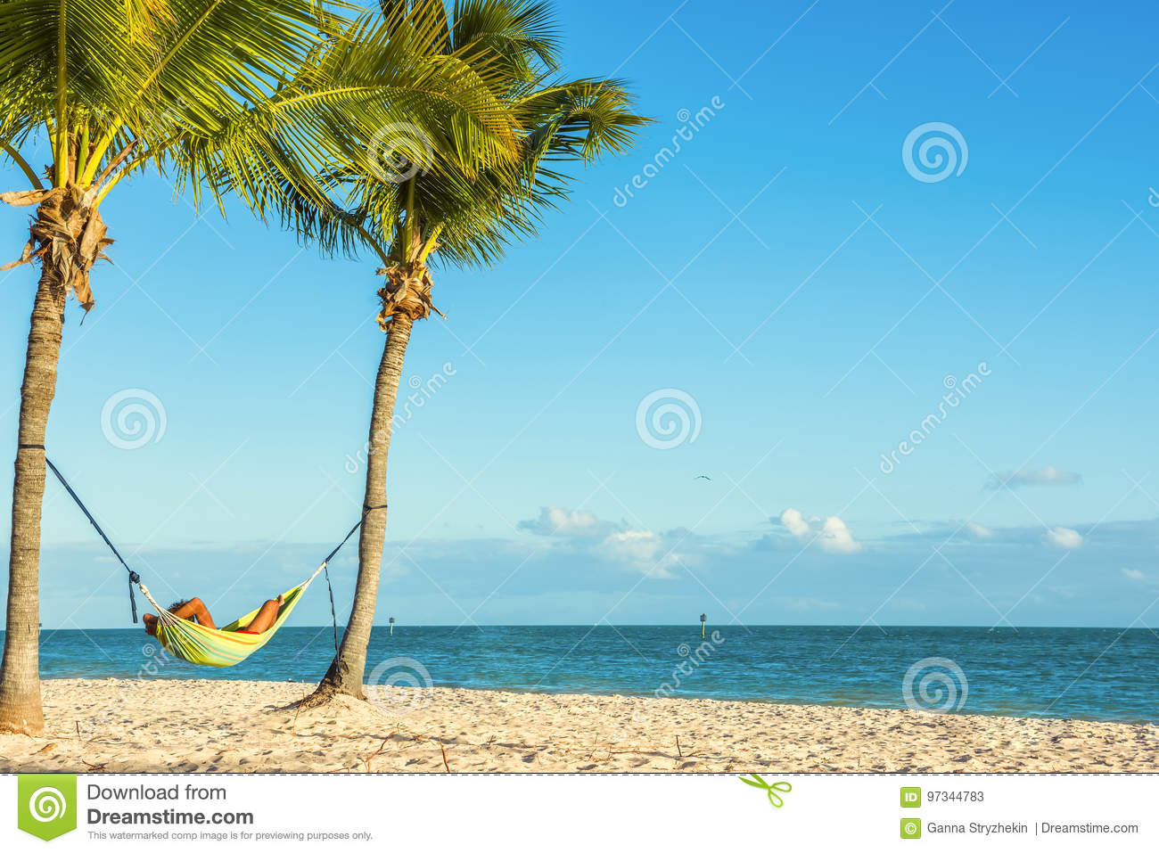 Hammock Between Two Palm Trees With A Resting Man On A