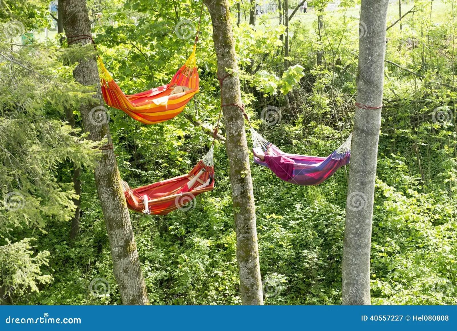 hammocks between trees stock
