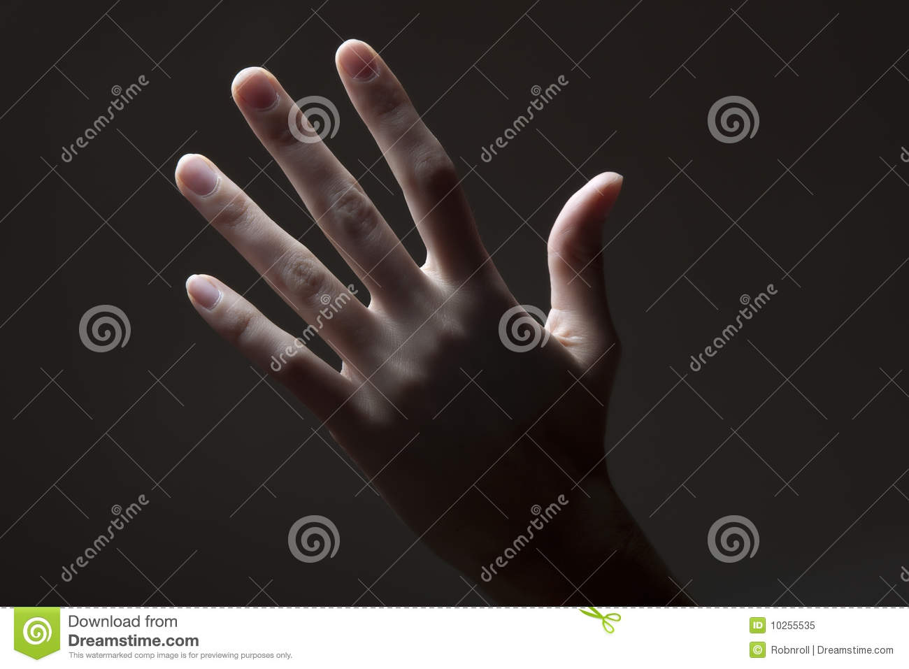 Hand Counting Five Stock Image Image Of Human Elementary