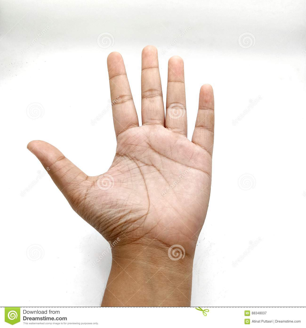 Hand Counting Number Five Stock Image Image Of Person